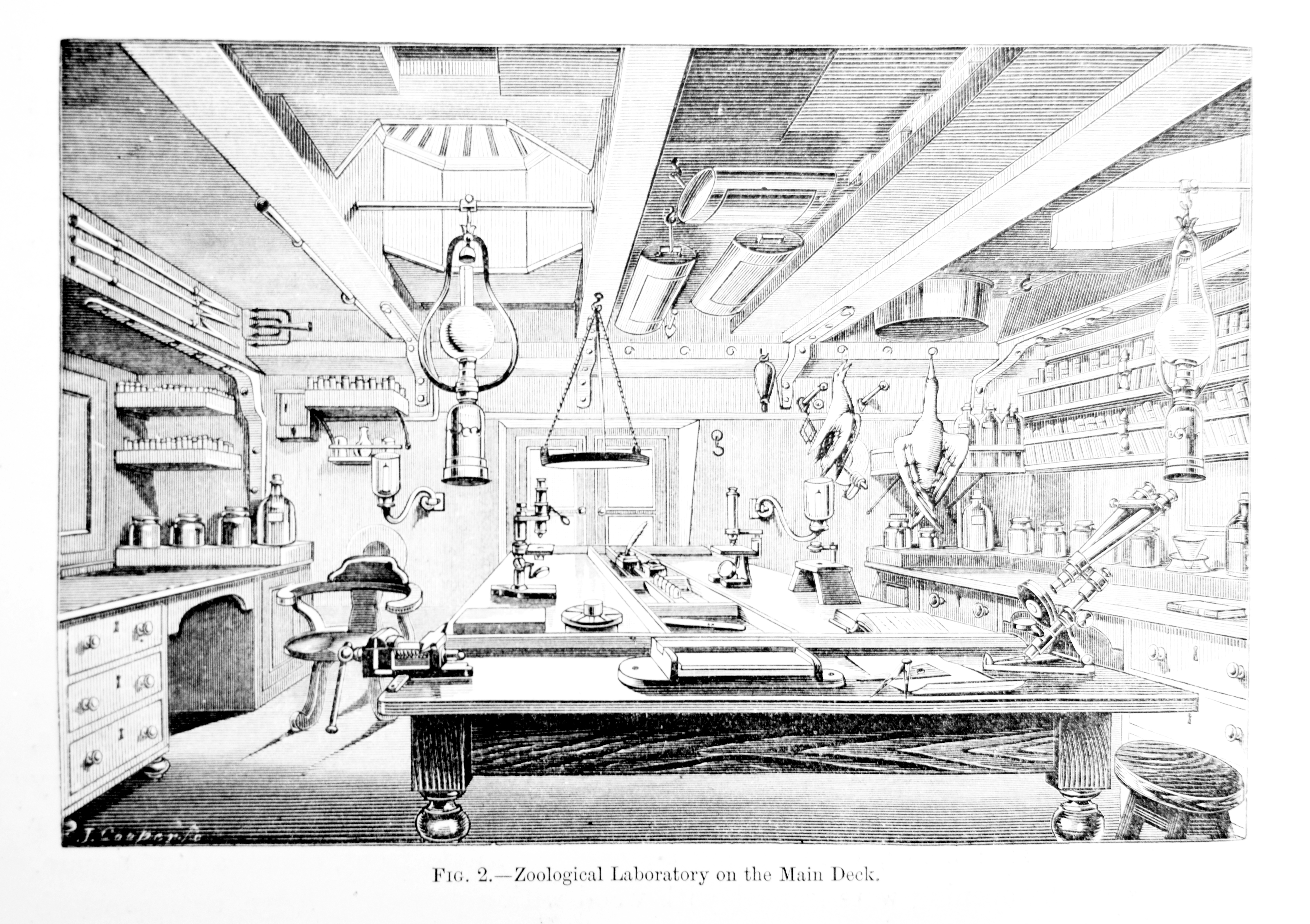 In the Natural History Laboratory, specimens could be examined and preserved with the use of scientific equipment. Note the microscope.